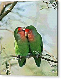 Wild Peach Face Love Bird Whispers Acrylic Print by Tom Janca