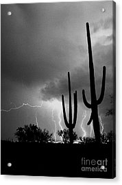 Acrylic Print featuring the photograph Wild Places by J L Woody Wooden