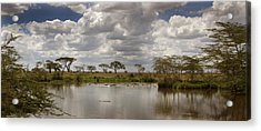 Acrylic Print featuring the photograph Wild Pond by Joseph G Holland