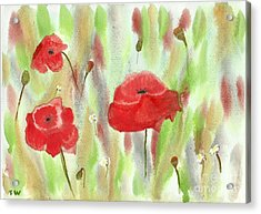 Wild Poppies Acrylic Print by Tracey Williams