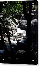 Wild River Acrylic Print by Brian Williamson