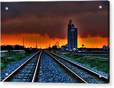 Wild Sky Acrylic Print by Larry Trupp