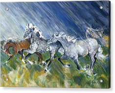Wild Storm Acrylic Print by Mary Armstrong