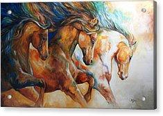Wild Trio Run Acrylic Print by Marcia Baldwin