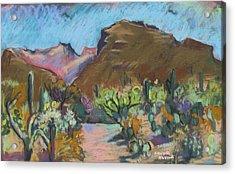 Wild Tuscon Acrylic Print