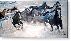 Wild Wild Horses Acrylic Print