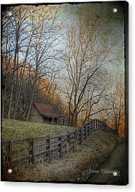 Wildcat Road Cabin Acrylic Print