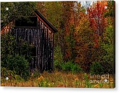 Wilderness Barn Acrylic Print by Brenda Giasson