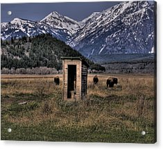 Wilderness Outhouse Acrylic Print by CR  Courson