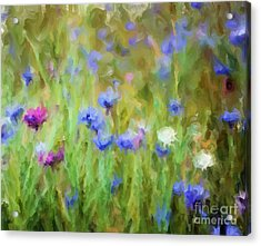 Wildflower Fields Acrylic Print