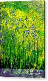 Wildflower Impression By Jrr Acrylic Print by First Star Art