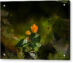 Acrylic Print featuring the digital art Wildflower In The Twilight Zone by J Larry Walker