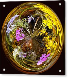 Acrylic Print featuring the photograph Wildflower Paperweight by Gary Holmes