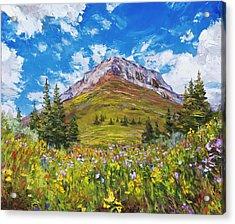 Wildflower Summer Acrylic Print by Steven Boone