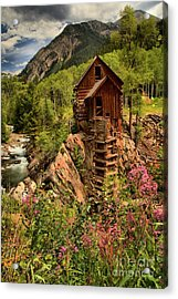 Wildflowers And Clouds Acrylic Print by Adam Jewell