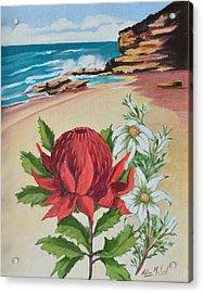 Wildflowers And Headland Acrylic Print by Aileen McLeod
