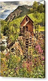 Wildflowers And History Acrylic Print by Adam Jewell