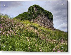 Wildflowers And Vines Surround The Loyalsock Stonework Lime Kiln Acrylic Print by Gene Walls