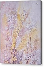Wildflowers Acrylic Print by Carolyn Rosenberger