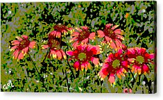 Acrylic Print featuring the painting Wildflowers IIi Florida Contemporayary Digital Art by G Linsenmayer