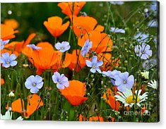 Acrylic Print featuring the photograph Gabriella's Flowers by Lisa L Silva