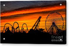 Wildwood At Dawn Acrylic Print