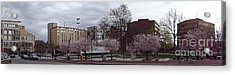 Acrylic Print featuring the photograph Wilkes-barre In Bloom by Christina Verdgeline