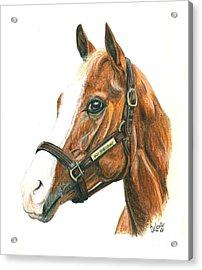 Will Take Charge Acrylic Print by Pat DeLong