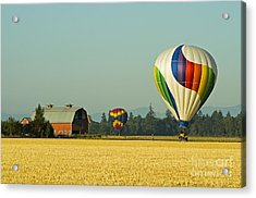 Acrylic Print featuring the photograph Willamette Valley Ballooning by Nick  Boren