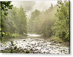Williams River Summer Mist Acrylic Print by Thomas R Fletcher