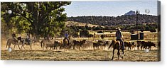 Williamson Valley Roundup 6 Acrylic Print