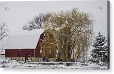 Willow And Barn After Nemo Acrylic Print