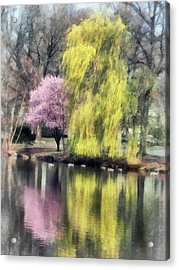 Willow And Cherry By Lake Acrylic Print by Susan Savad