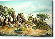 Willow Loop Overlook Acrylic Print