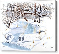 Willowood Winter Acrylic Print