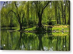 Willows Weep Into Their Reflection  Acrylic Print by LeeAnn McLaneGoetz McLaneGoetzStudioLLCcom