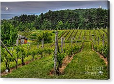 Willows Winery Acrylic Print by Trey Foerster