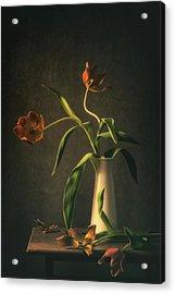 Wilted Tulips Acrylic Print