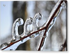 Wind-blown Icicles Acrylic Print