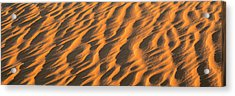 Wind Blown Sand Tx Usa Acrylic Print by Panoramic Images