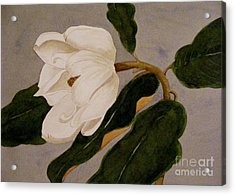 Acrylic Print featuring the painting Windblown Magnolia by Nancy Kane Chapman