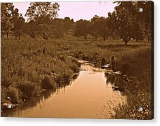 Winding Creek Acrylic Print