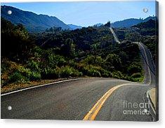 Winding Journey Acrylic Print