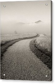 Winding Path And Mist Acrylic Print by Marilyn Hunt