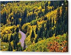 Winding Road Acrylic Print by Allen Beatty