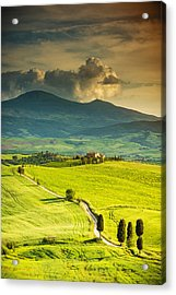 Winding Road In Tuscany Acrylic Print by Gehringj