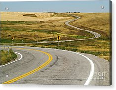 Acrylic Print featuring the photograph Winding Road by Sue Smith