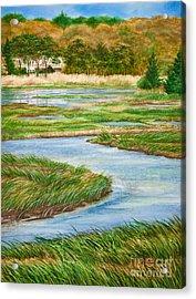 Winding Waters - Cape Salt Marsh Acrylic Print by Michelle Wiarda
