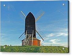 Windmill At Brill Acrylic Print by Tony Murtagh