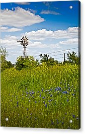 Windmill Acrylic Print by Mark Alder